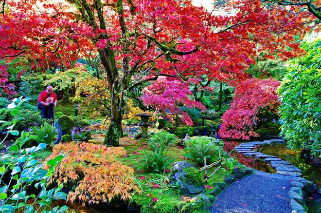Butchart Gardens in October