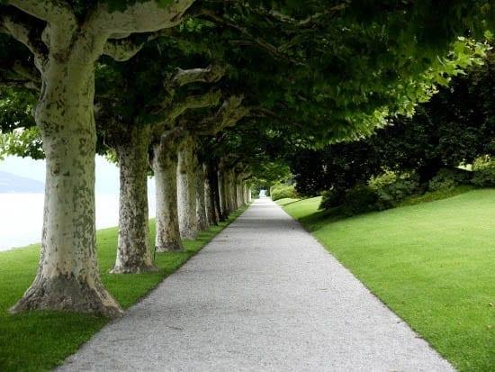 Travel Photos: The Gardens of Villa Melzi in Bellagio, Italy