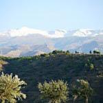 """""""Granada area scenery"""""""