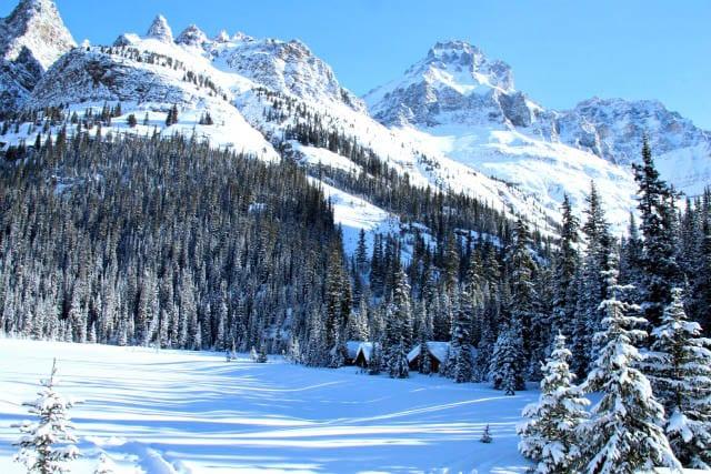 """Lake O'Hara's lakeside cabins in a pristine mountain setting"""