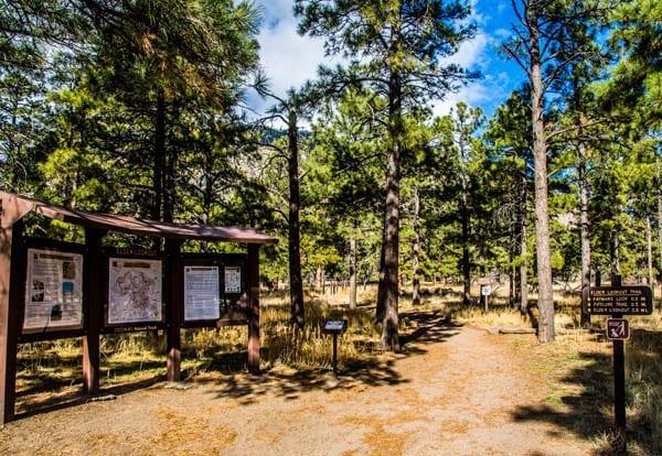 Best Hiking Spots: The Fat Man Loop Trail in Flagstaff, Arizona