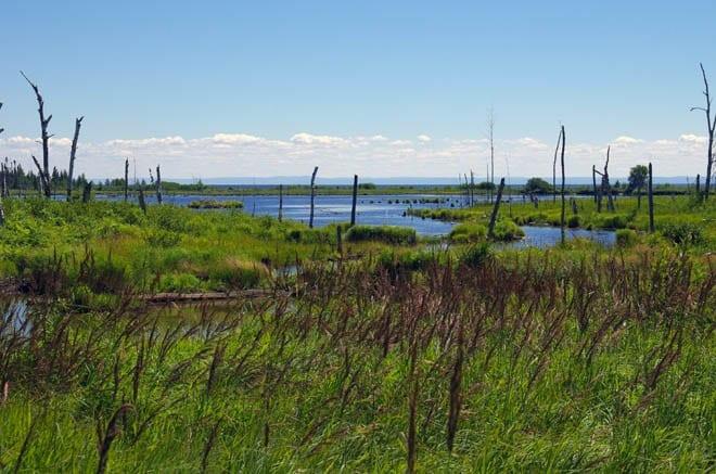 """I loved the little ponds & lakes dotting the landscape"""