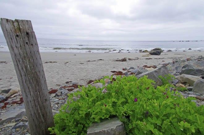 """Empty beaches on the Aspotogan Peninsula"""