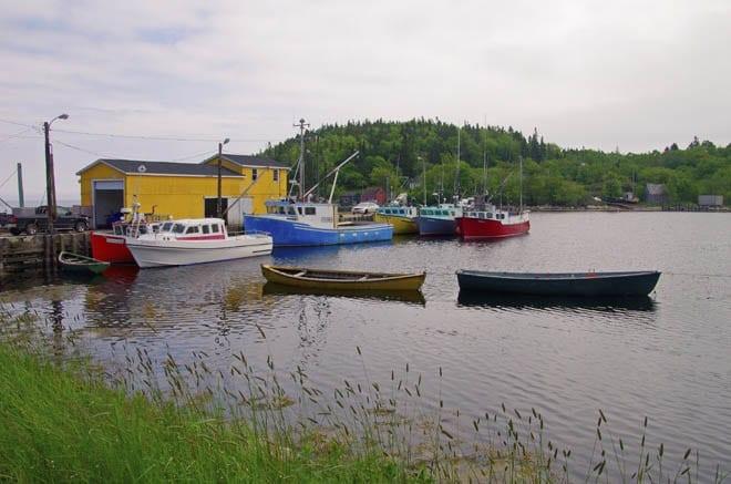 """Fishing boats don't lack fo"""