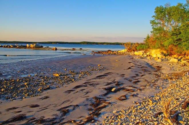 A Visit to Thomas Randall Provincial Park, Nova Scotia
