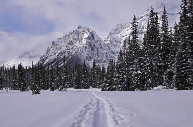 """On the trail toward Shadow Lake"""