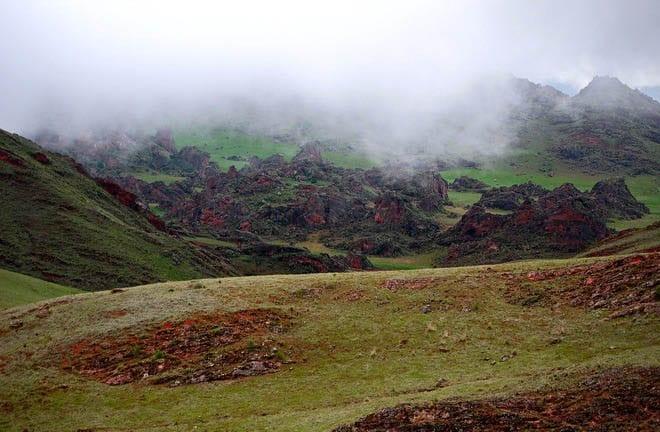 """Swirling mist in Los Cordones National Park"""