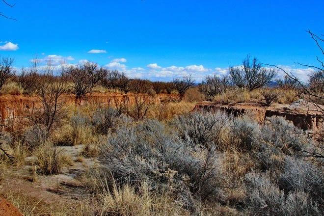 """The landscape around a Clovis site"""