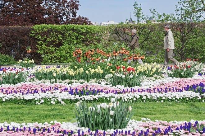 """The Bruhlscher Gardens draw loads of walkers"""