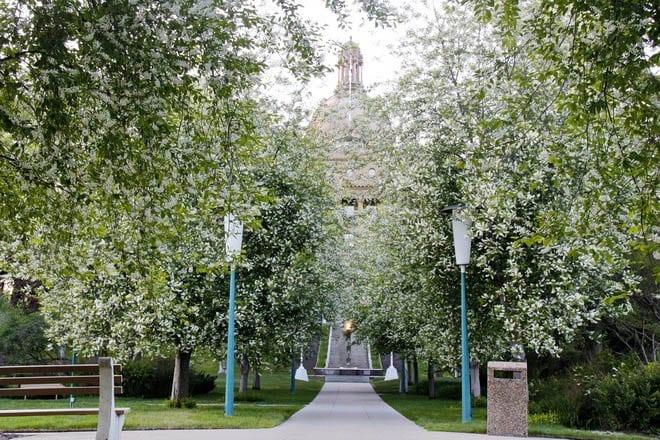 """A mass of blooms outside the Alberta Legislature"""