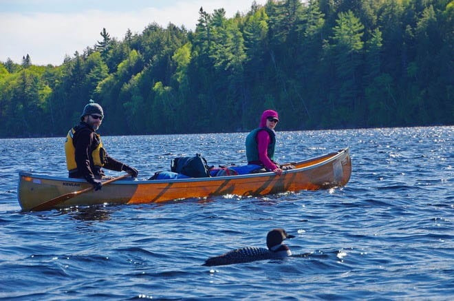 """Canoeing in late May in Algonquin Park"""
