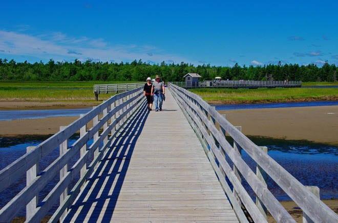 """The boardwalk to Callanders Beach"""