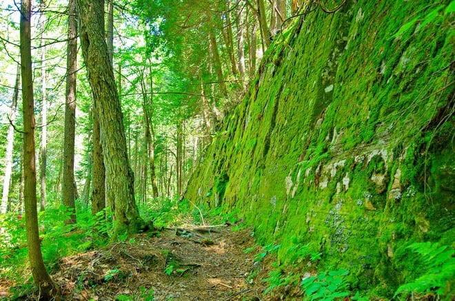 """La Maurice National Park hiking"""