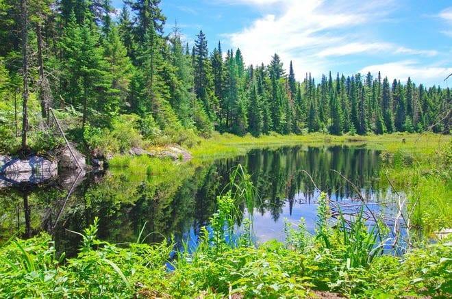 """Beautiful lake views"""