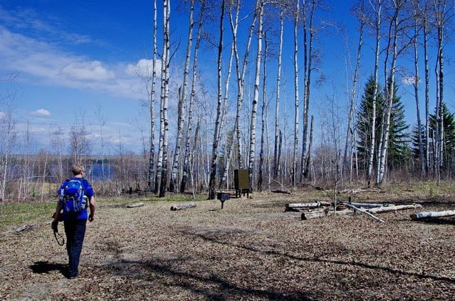 """""""Campsite BT8 on the Boreal Trail"""""""