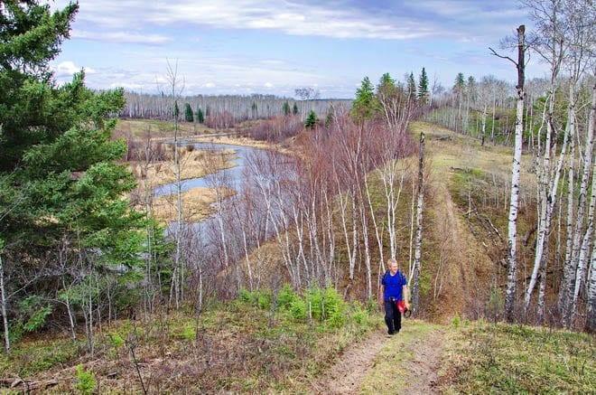 """Boreal Trail, Meadow Lake Provincial Park, SK"""