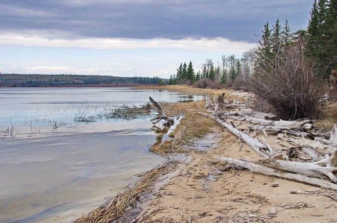 """The beach along Peitahigan Lake in Meadow Lake Provincial Park"""