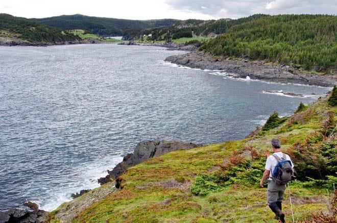 """Spurwink Island Trail near the end"""