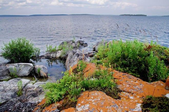 """""""Orange lichen covered rocks at the edge of Lac La Ronge"""""""