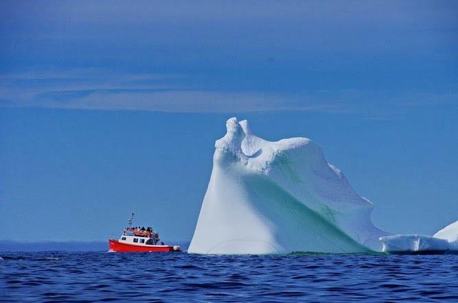 Twillingate Icebergs Tours