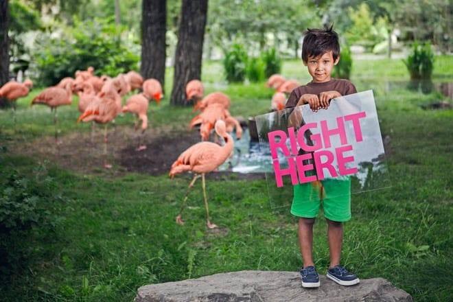 """""""A little boy in the Calgary Zoo"""""""