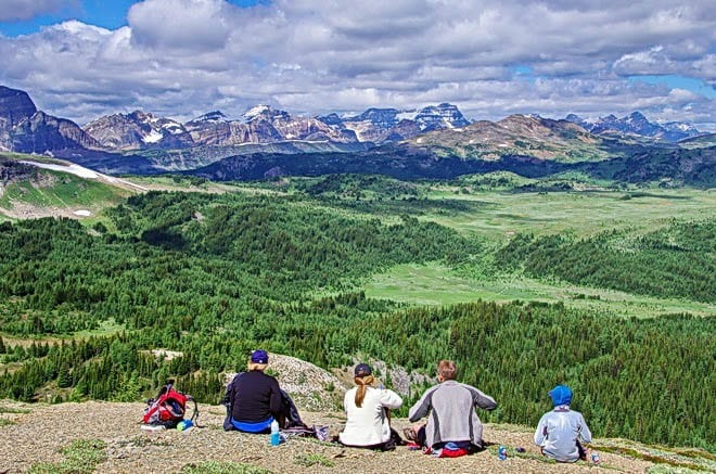 """""""What a great place for lunch with a view of the Sunshine Meadows"""""""