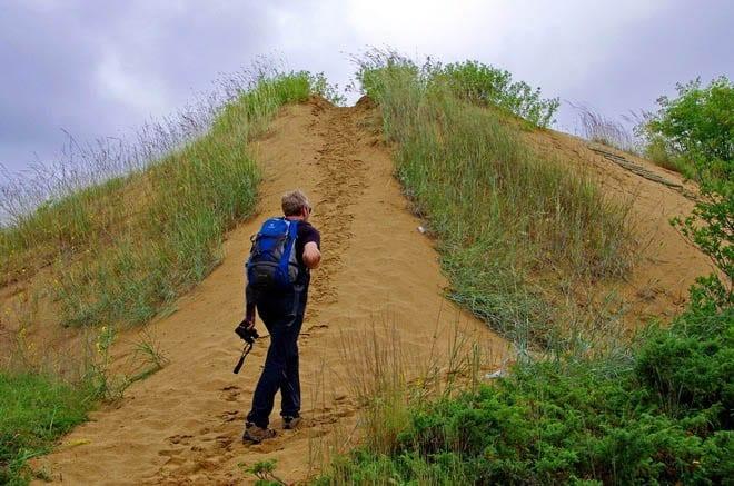 """Manitoba sand dunes"""