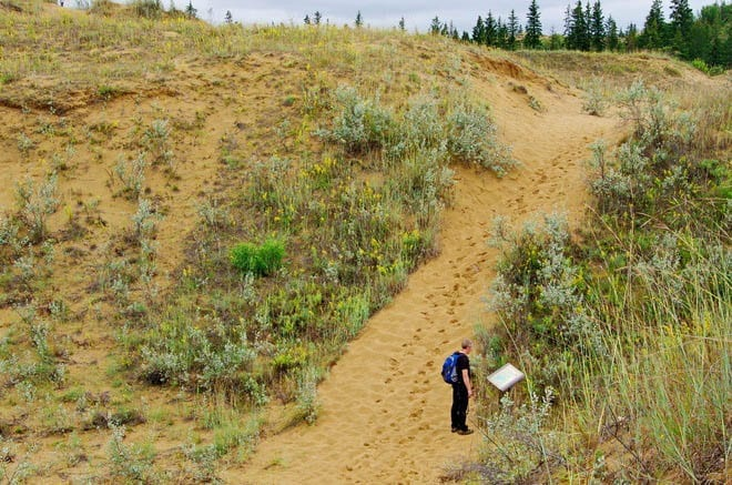 """Interpretive signs are scattered around the trail - Spirit Sands Park"""