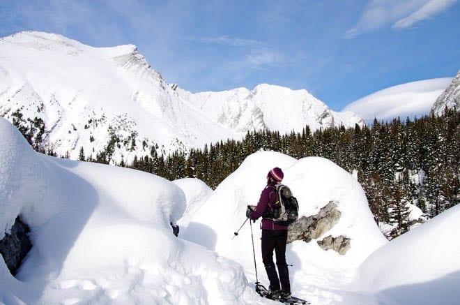 Snowshoeing through the Elephant Rocks