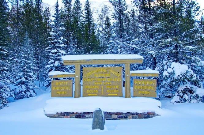 Skiing Chickadee Valley in Kootenay National Park