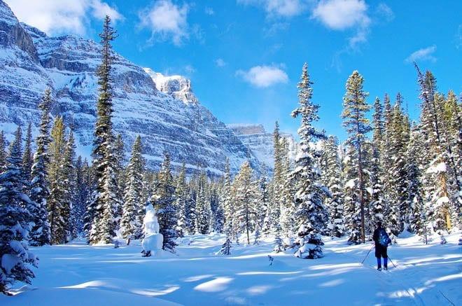 Scenery you get if you ski Chickadee Valley