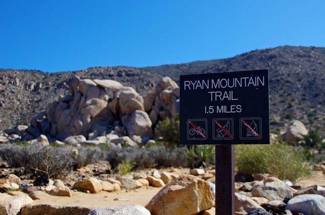 The Ryan Mountain Hike in Joshua Tree National Park