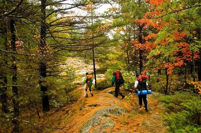 Hiking Killarney Park in October