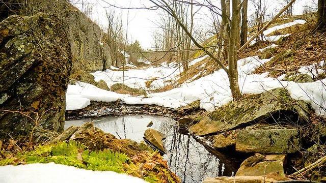 The Ganaraska hiking trail in March