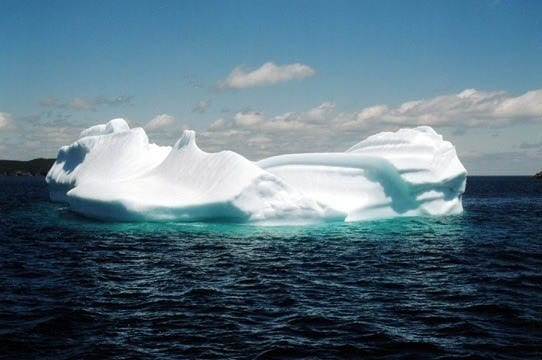 One of the big icebergs seen near Witless Bay Ecological Reserve