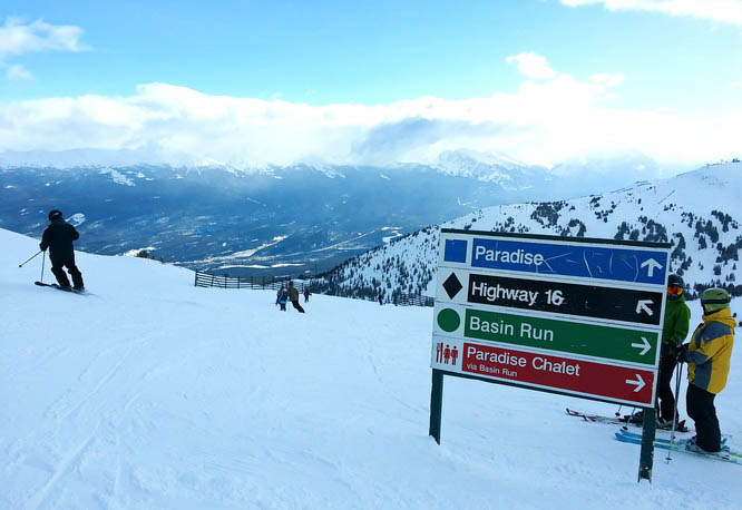 Nicely laid out runs at Marmot Basin Resort