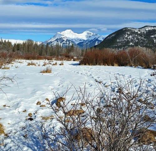 The best winter bike ride in Banff