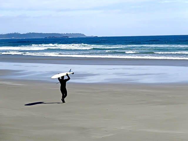 Shorebirds, Surfers with Brain Freeze & Flaming Gin