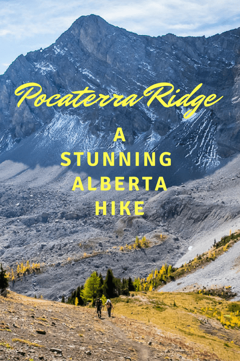 Pocaterra Ridge - one of the best day hikes in Alberta