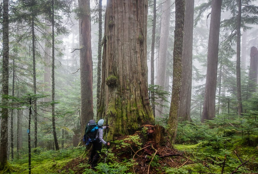 25 of the Very Best Outdoor Adventures in British Columbia