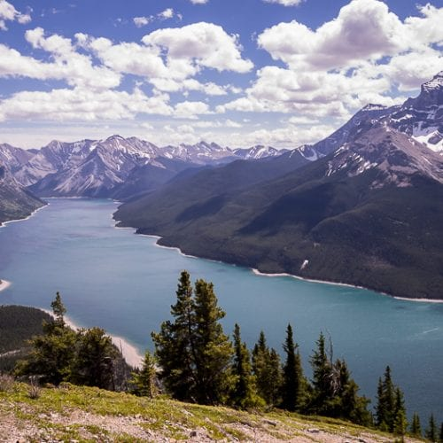 Banff Hikes: The Aylmer Lookout Trail